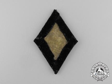 Allgemeine SS Dental Service Trade Insignia (Officer version) Reverse