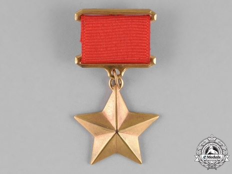 Type I, Star Medal in Gold (in bronze gilt)