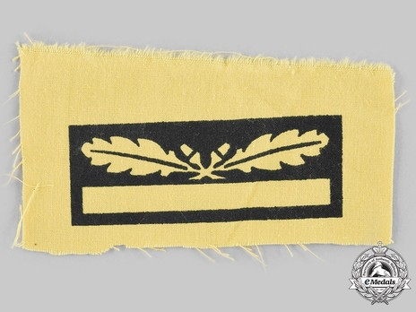 German Army Generalmajor Sleeve Grade Insignia Obverse