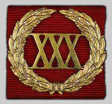 Decoration for Impeccable Service Silver Device (30 years)