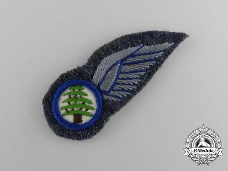 Lebanese Air Force Pilot Badge Obverse