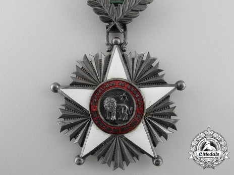 Order of the Lion, Knight