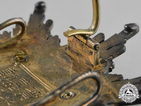 Order of Illustrious Brilliant Golden Grain, II Class Star Reverse Detail