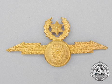 Air Force Pilot Badge Obverse