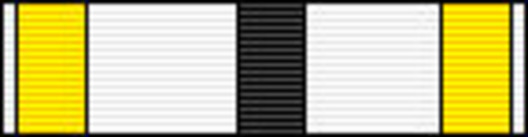 Officer (for Architecture, 2000-) Ribbon