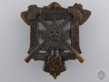 224th Forestry Battalion Other Ranks Cap Badge (Small Central Crown) Obverse