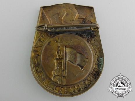 National Socialist Movement Diet Badge Reverse