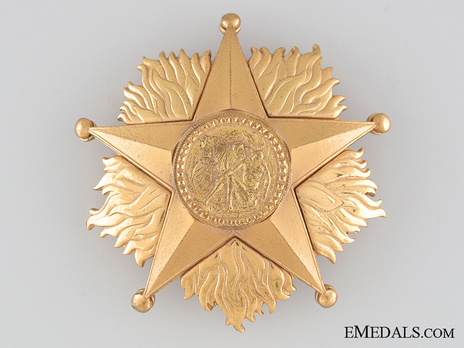 Order of the Star of Italian Solidarity, Type I, I Class (in bronze gilt) Obverse