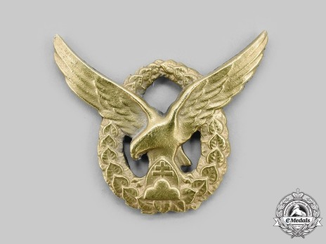 Pilot and Observer Badge, Night Fighters and Bombers (Pilot)