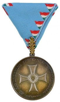Flood Protection Service Decoration Obverse