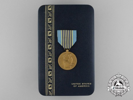 Airman's Medal, Case