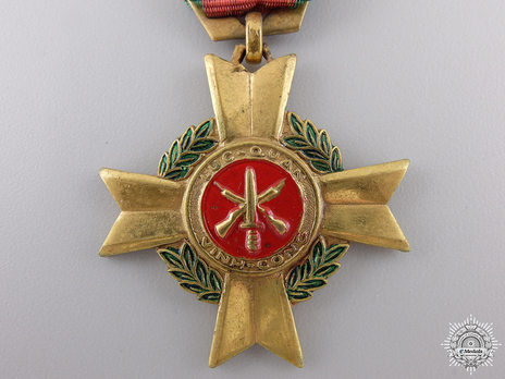 Meritorious Service Bronze Gilt Medal Obverse