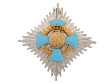 Order of Faithful Service, Grand Officer's Breast Star Obverse