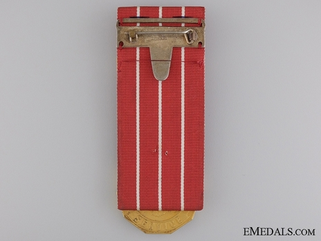 Medal (with 1 clasp, 1954-) Reverse