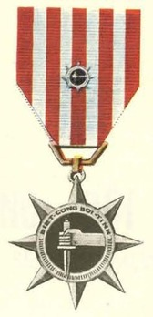 Special Service Medal