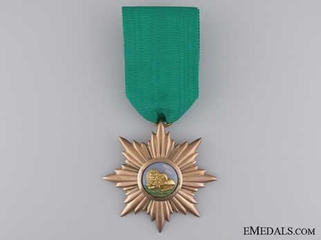 Order of Art and Science, II Class Obverse