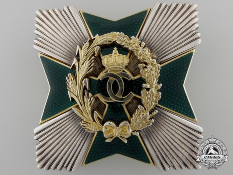 Order of Agricultural Merit, Type I, Grand Officer's Breast Star Obverse