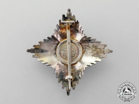 Royal Order of Merit of St. Michael, II Class Cross Breast Star Reverse