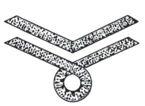 Kriegsmarine Female Auxiliary Oberführerin Chevron Obverse