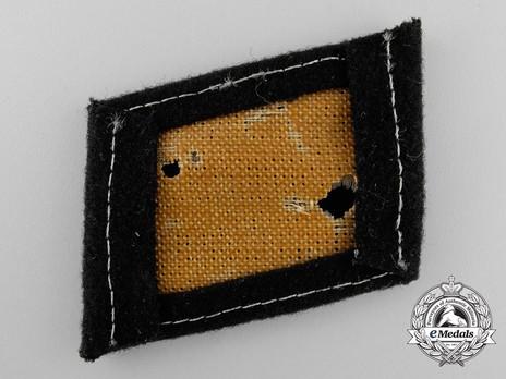 Waffen-SS 'Dirlewanger' Division Collar Tab Reverse