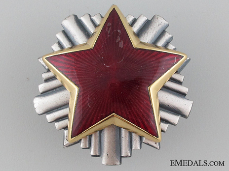 Army Officer's Cap Badge Obverse
