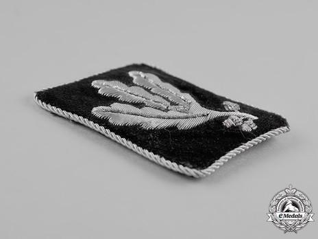 Waffen-SS Pre-1942 Gruppenführer Collar Tabs Obverse