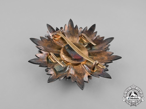 Order of the Crown (Order of Taj), I Class Breast Star Reverse