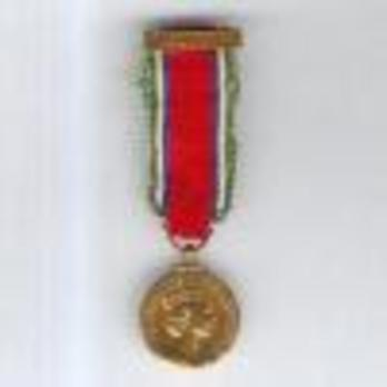 """Miniature Bronze Medal (with """"CONGO"""" clasp) Obverse"""