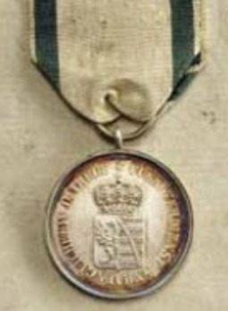 Medal for Merit, Loyalty, and Allegiance in Silver