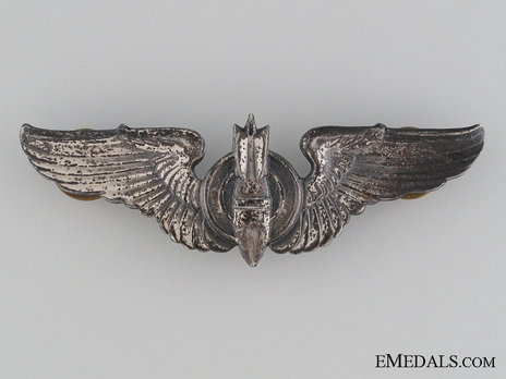 Wings (with sterling silver) Obverse