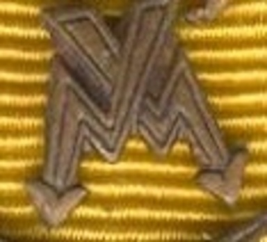 Bronze Medal Clasp for Intelligence Service Obverse