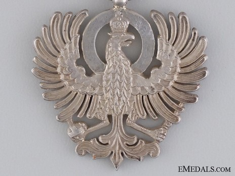 Eagle Member (with enamelled shield) Reverse