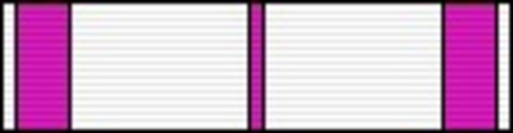 Literature ribbon4