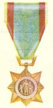 Civil Actions Medal, II Class