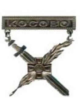 Warrior-Peacemaker Badge (Kosovo) Obverse