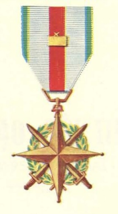 Vietnam leadership medal