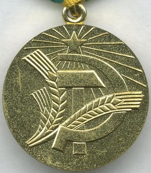 Development of the Non-Black Earth Region of the RSFSR Brass Medal Reverse