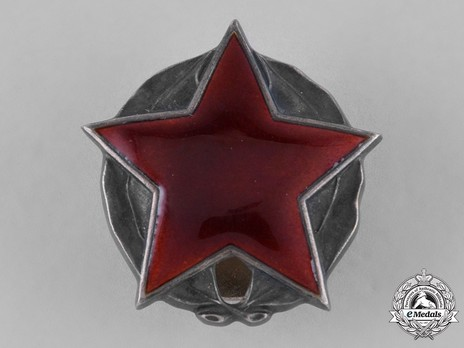 Order of the Partisan Star, II Class Obverse