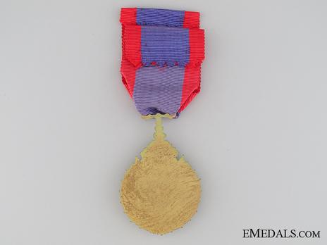 Order of Merit in Education, Knight Reverse