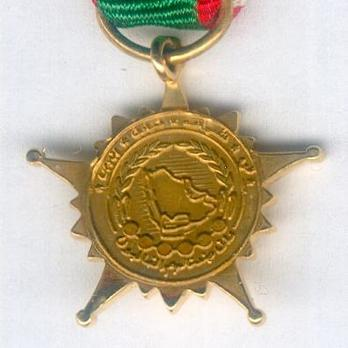 Miniature Gulf Co-operation Gulf Medal, I Class Star Reverse