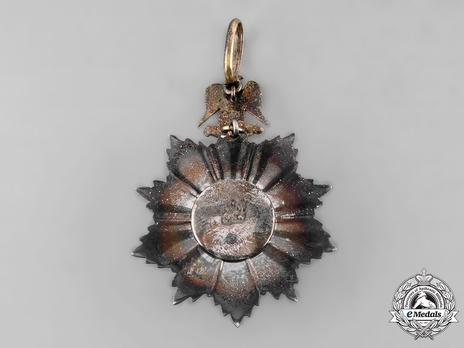 Order of Merit, Type I, Grand Officer Reverse