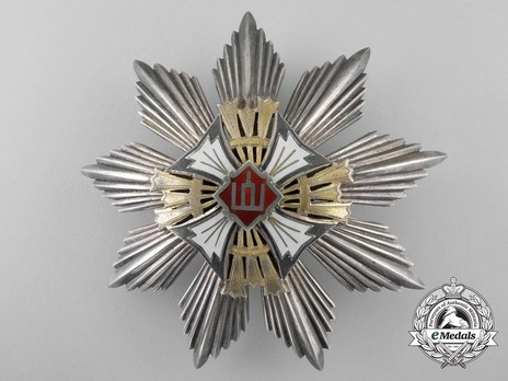 Order of Gediminas, Type II, I Class Breast Star Obverse