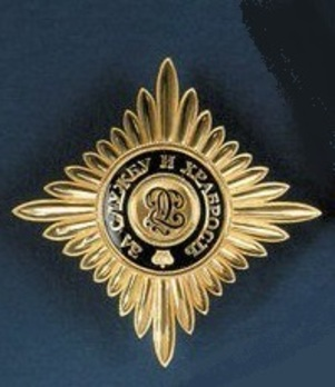 Order of Saint George I Class Breast Star Obverse