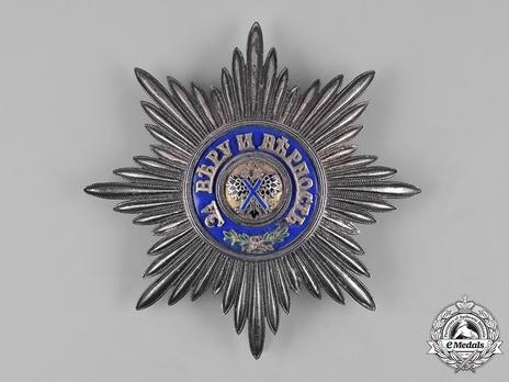 Civil Division, I Class Breast Star (in silver)