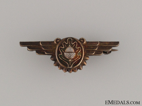 Wings (with silver-gilt) Obverse