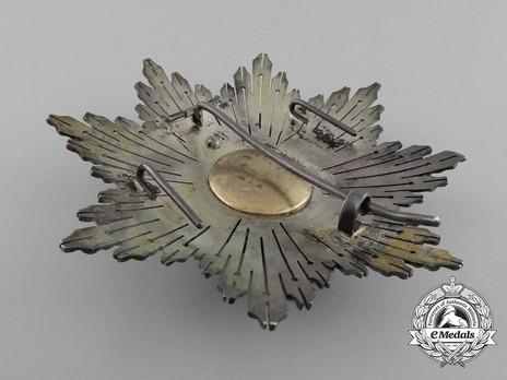 2nd Class Breast Star (white distinction) (with Fleur de Lys and Royal Crown) (Silver and Silver gilt) Reverse