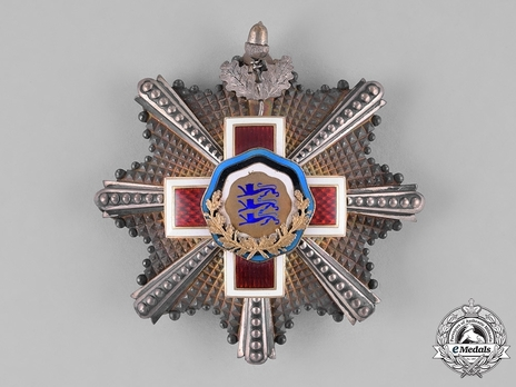 Order of the Estonian Red Cross, I Class Breast Star Obverse