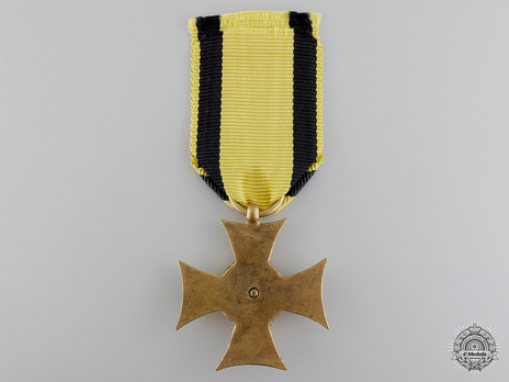 Type II, I Class (for 50 years with gold eagle) Reverse