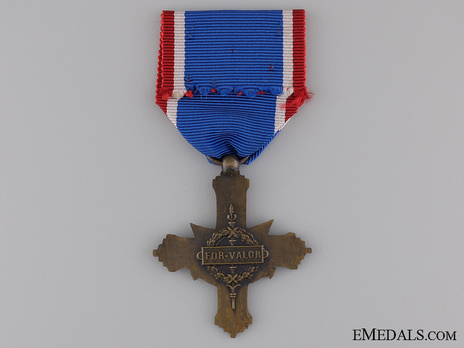 Army Distinguished Service Cross  (by Andre Smith) Reverse