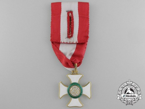 Hungarian Military Order of Maria Theresa, Knight Reverse